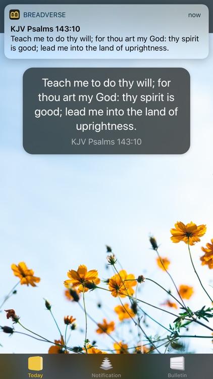 BreadVerse: Daily Bible Verse screenshot-7