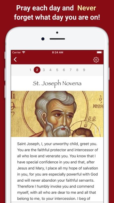 Pray Catholic Novenas Screenshot