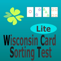 Wisconsin Card Sorting Test J
