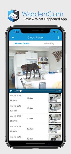 video surveillance par iphone