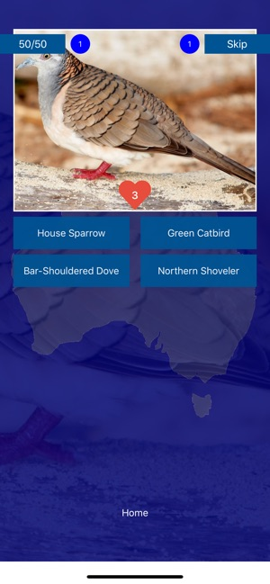 bird quiz birds of australia on the app store rh apps apple com