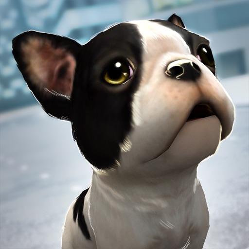 My Puppy Dog: Animal Adventure Icon