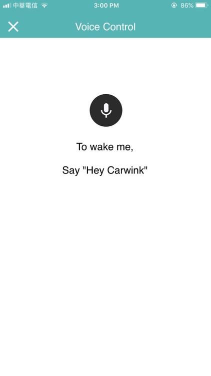 CarWink screenshot-3