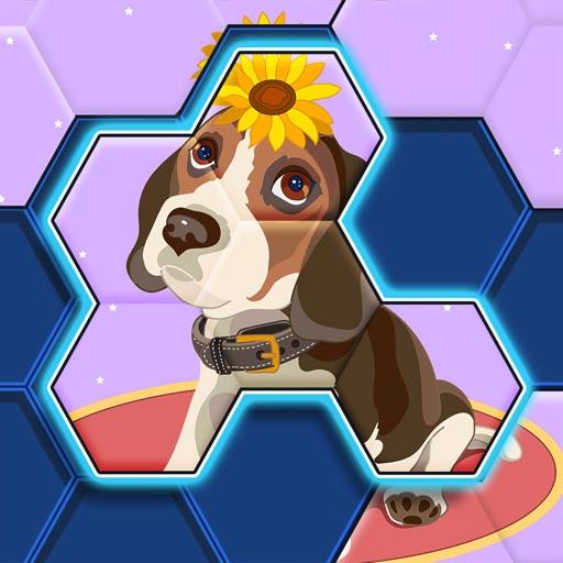 Color Hexa Jigsaw icon
