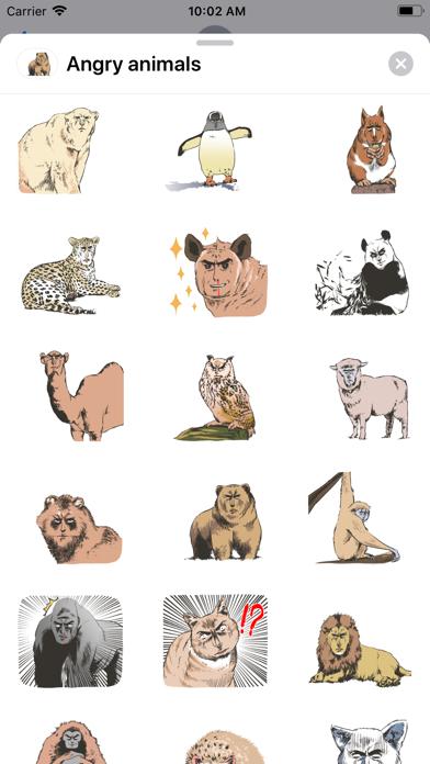 Angry - animals screenshot 2