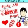 Drうしんハイドーの心臓教室その1(StudyHeart1)