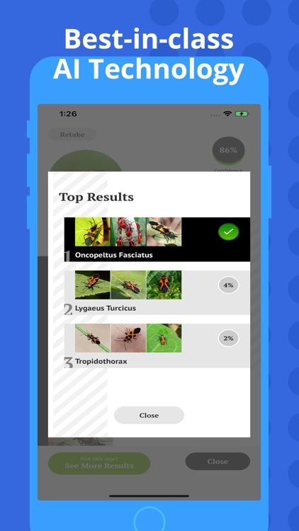 Insect Identification screenshot-3