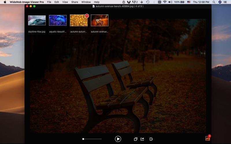 WidsMob Viewer Pro screenshot 1