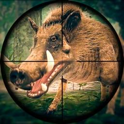 Wild Hunt Pig Sniper Shooting