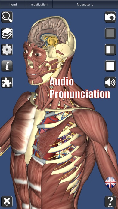 3D Anatomy IPA Cracked for iOS Free Download