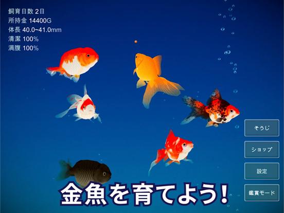 金魚育成アプリ「ポケット金魚」のおすすめ画像3