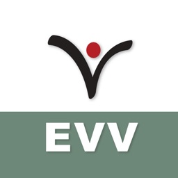 Vertex EVV