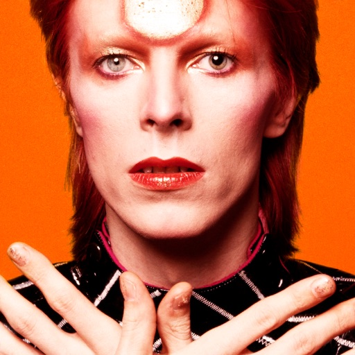 David Bowie is image