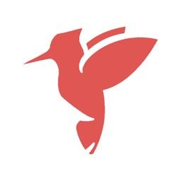 Woodpecker - Language Learning