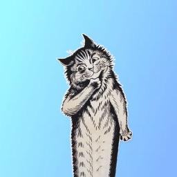 Cat Paintings - Cat Drawings