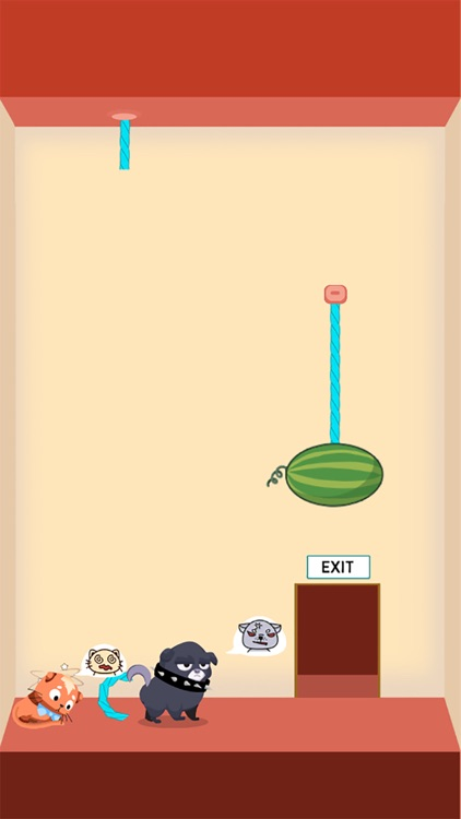 Rescue Kitten - Rope Puzzle screenshot-4