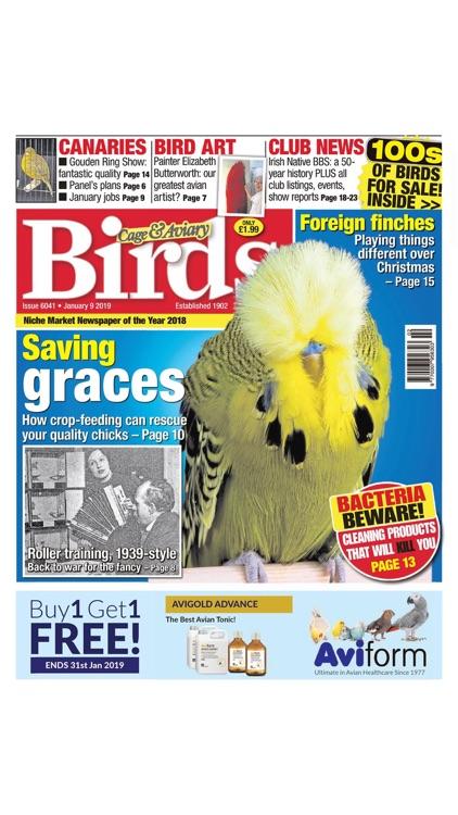 Cage & Aviary Birds