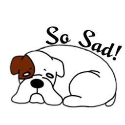 White Cute Boxer Dog Sticker
