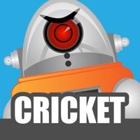 Codes for Robot Cricket Hack