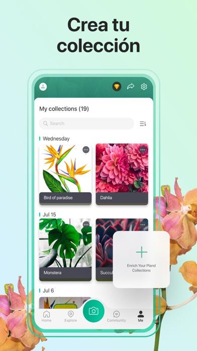 Descargar PictureThis - Plant Identifier para Android