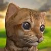 我可爱的小猫:宠物游戏