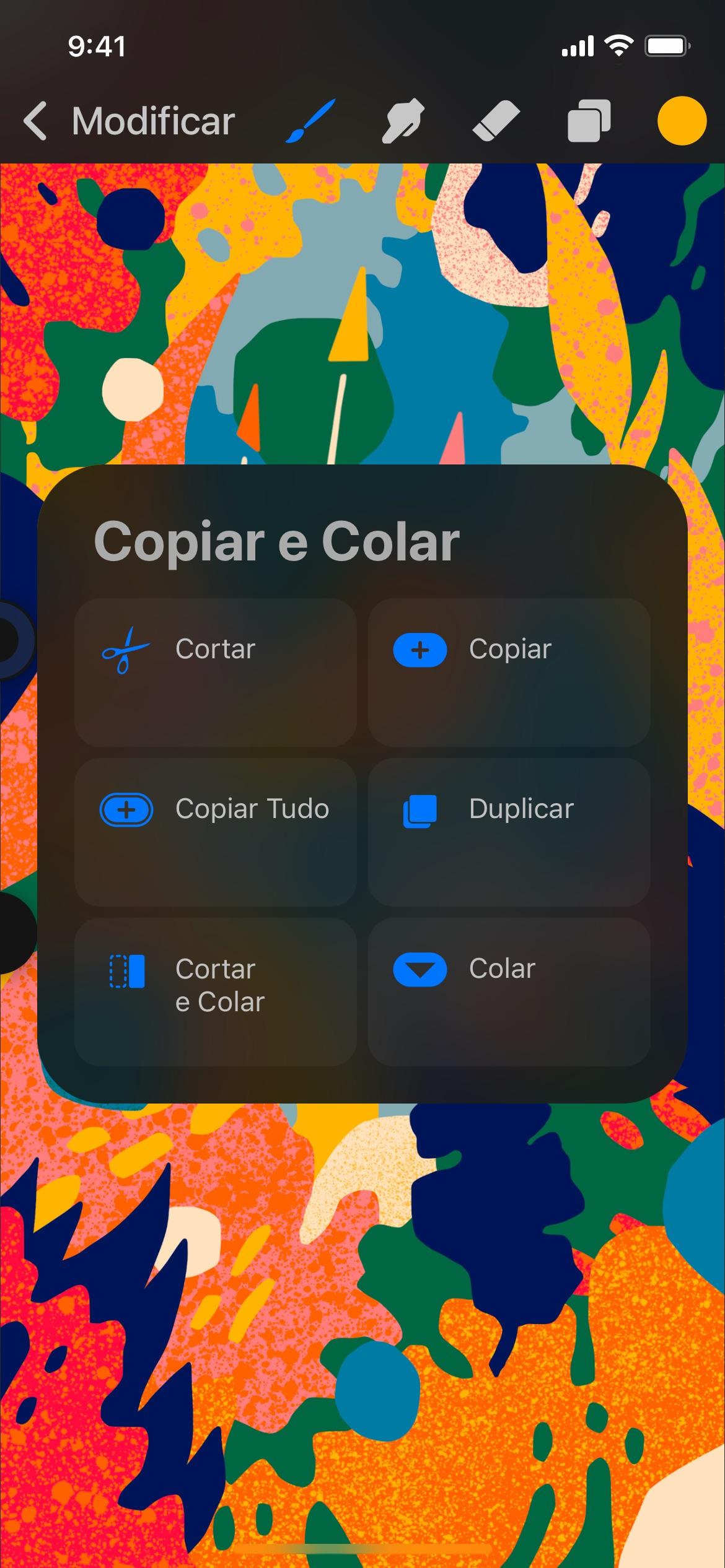 Screenshot do app Procreate Pocket