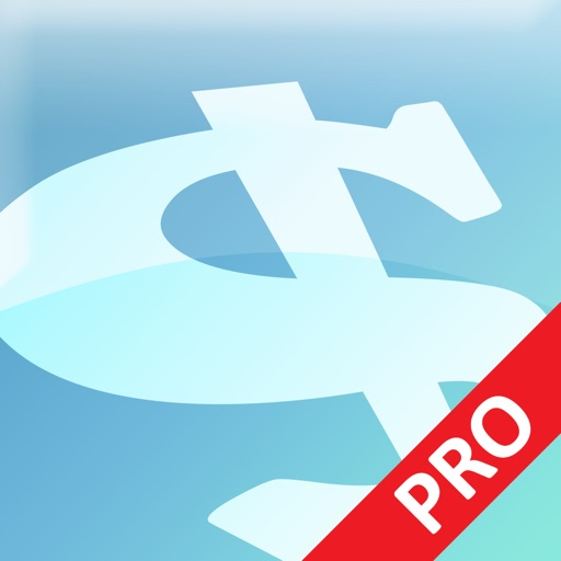 Express Invoice Professional