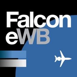 Falcon eWB