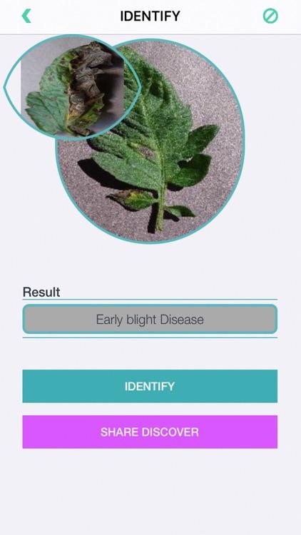 Plants Diseases Identifier screenshot-5