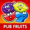Pub Fruit & Roulette by Reflex