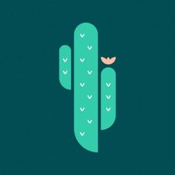 Cactus: Mindfulness Journal