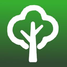 Tree Dictionary