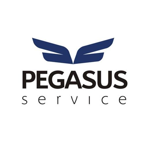 PEGASUS Service