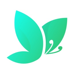 Social Butterfly Video Chat