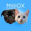 Milliox Kitty And Puppy
