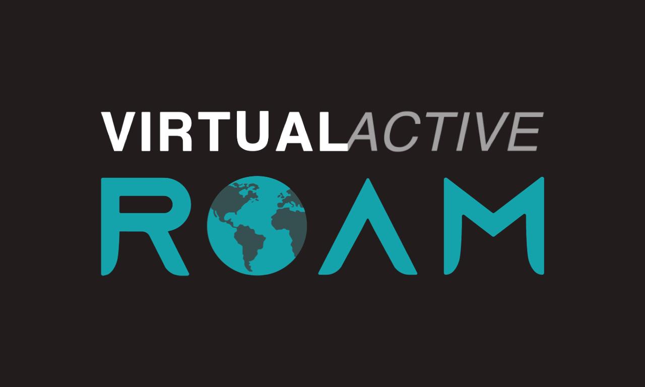 Virtual Active Roam