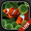 ロック画面用の水族館ライブ壁紙 - iPhoneアプリ