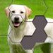 Hexa Jigsaw Puzzle ® Hack Online Generator