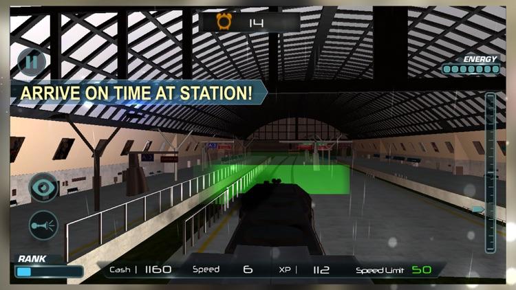 Cruise Train Driver Simulator screenshot-3