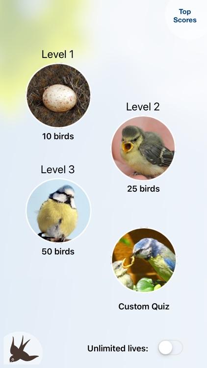 Chirp! Bird Songs UK & Europe screenshot-4