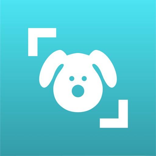 Dog Scanner