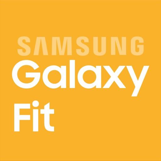 Samsung Galaxy Fit (Gear Fit)