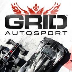 GRID™ Autosport analyse, service client