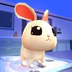 Pet Care 3D