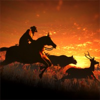 Codes for Westland Cowboy Rodeo Rider Hack