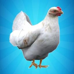 My Chicken Simulator