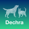 Dechra Dog and Cat Anaesthesia