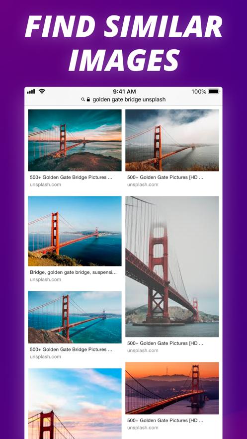 Reverse Image Search Extension App 截图
