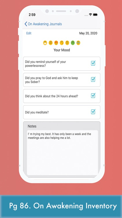 AA 12 Step Toolkit RecoveryBox screenshot-9