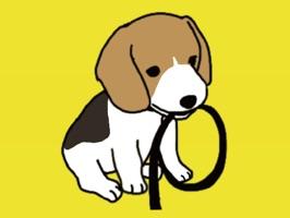 Beagle : Stickers